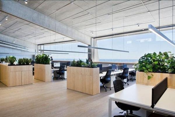 thiết kế văn phòng không gian xanh - Crystal Design TPL
