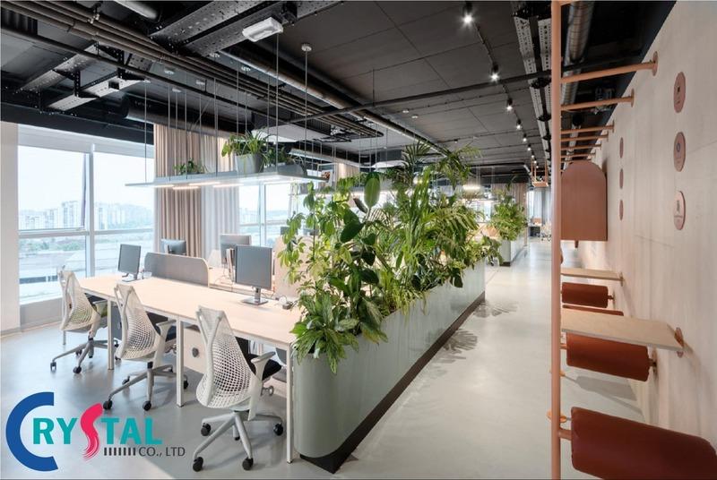 Văn phòng mở sẽ giúp các doanh nghiệp tối ưu được diện tích thiết kế văn phòng