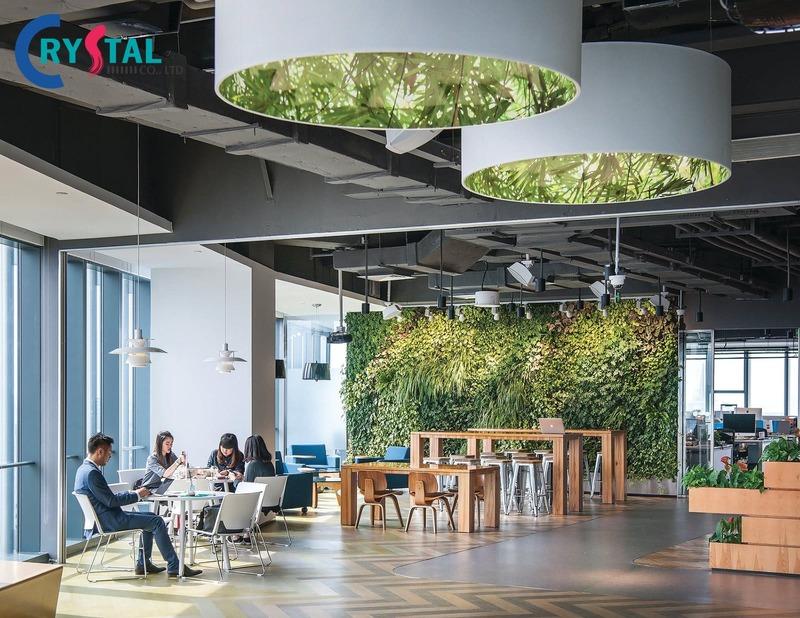định nghĩa văn phòng xanh - Crystal Design TPL