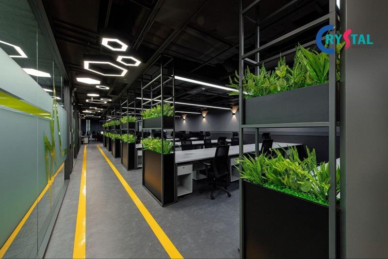 không gian kiến trúc văn phòng - Crystal Design TPL