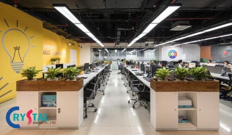 thiết kế nội thất phòng nhân viên - Crystal Design TPL