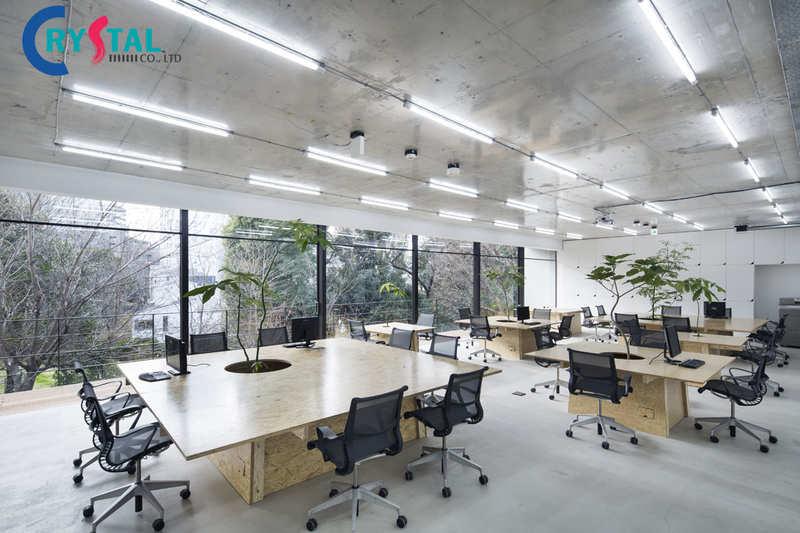 thiết kế văn phòng xanh - Crystal Design TPL