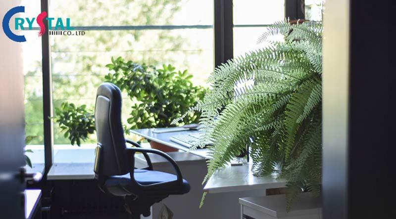 ý tưởng thiết kế không gian thư giãn nội thất văn phòng