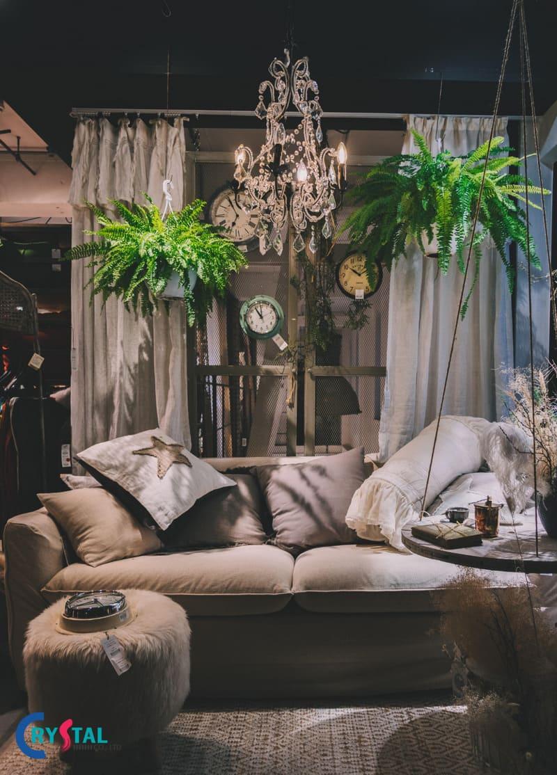 thiết kế phong cách nội thất hàn quốc