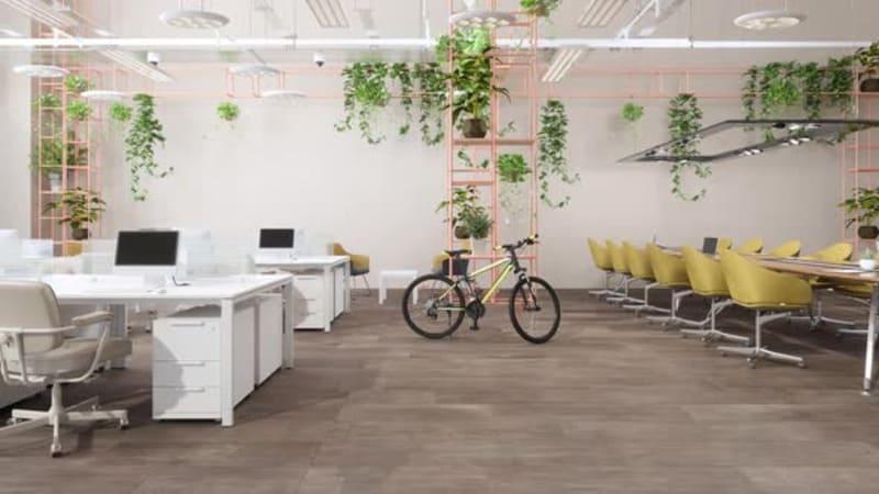Phong cách Eco giúp cải thiện sức khoẻ cho nhân viên